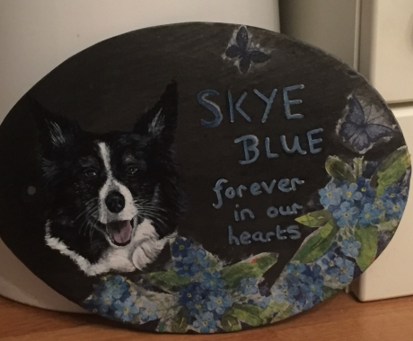 Slate portrait of Skye