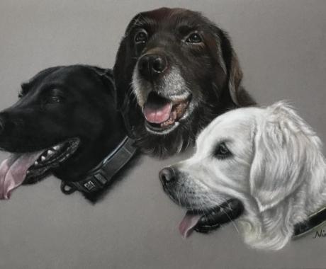 Blue, Bailey & Merryn
